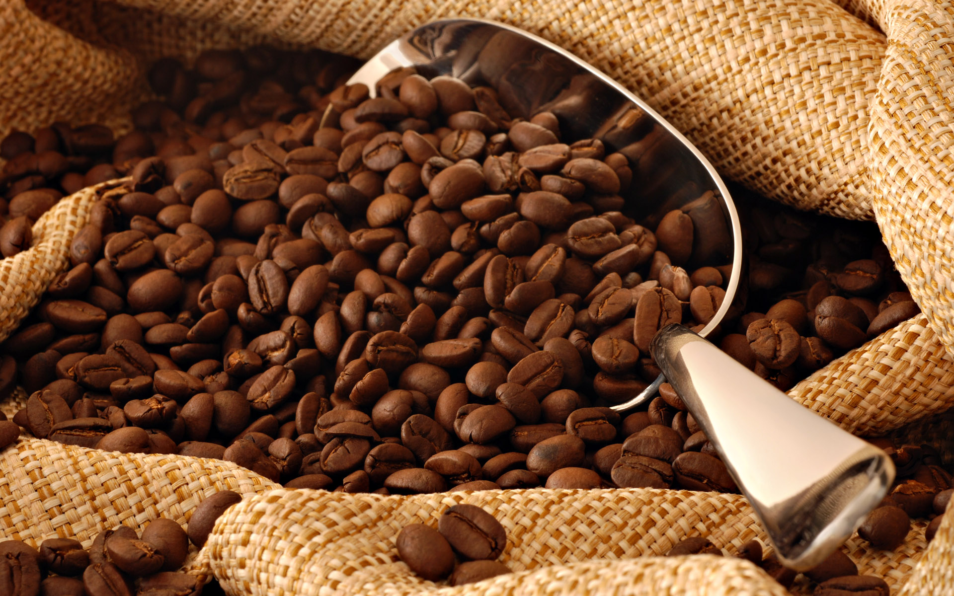 Picture Of Coffee Beans - Coffee Drinker