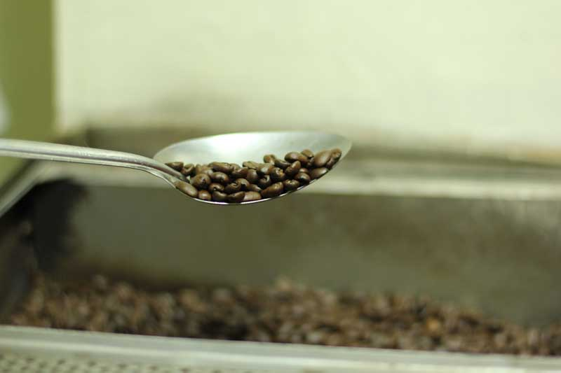 Roasted_Kopi_Luwak