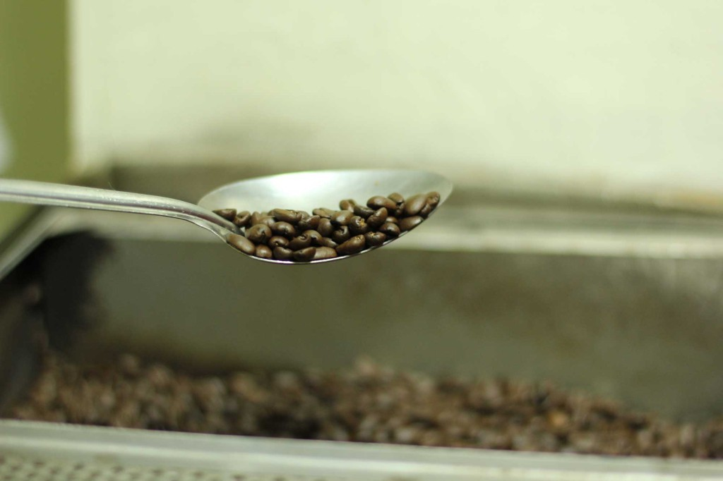 Roasted Civet Coffee
